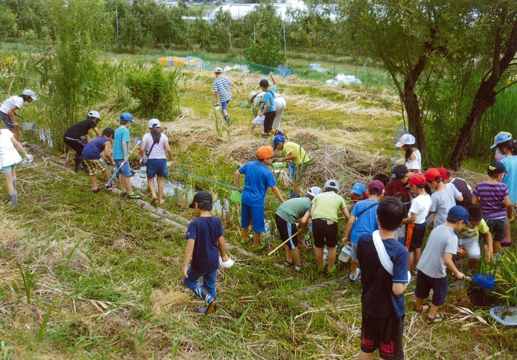 【共同募金助成】山形村の自然保護及び調査研究・自然体験活動(アクアの会・山形村)